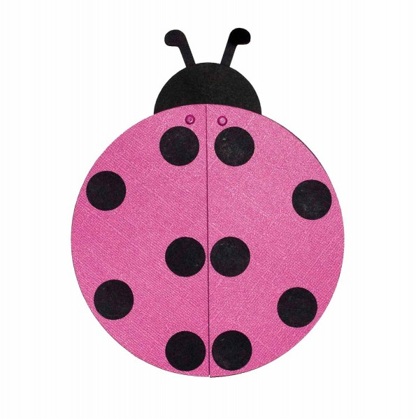 Luxury Pink Ladybug Baby Shower Decorations 13