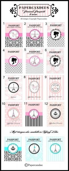 Printable The Original Parisian Themed Passport Invitations
