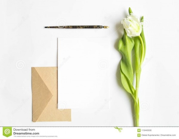 Letter, Envelope And Tulip On White Background  Invitation Card