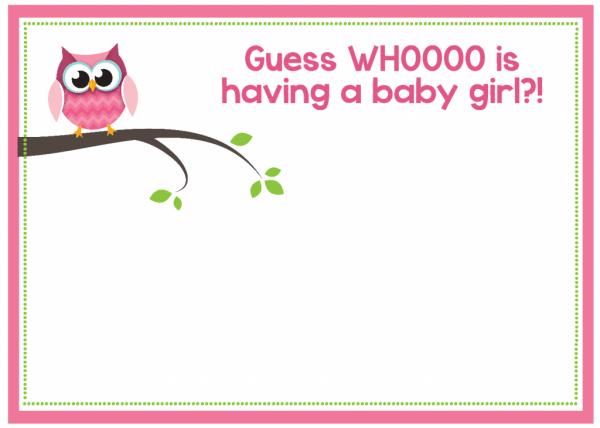Owl Baby Girl Shower Invitations