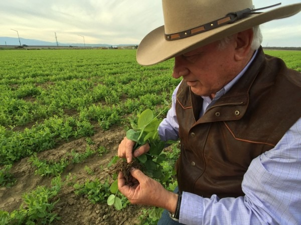 In The Central Valley, Drought Fears Ease, But Farmers Contend