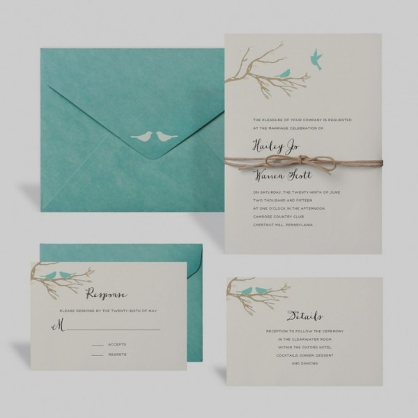 Wedding Invitation Kits Michaels Buy The Love Birds Kit By