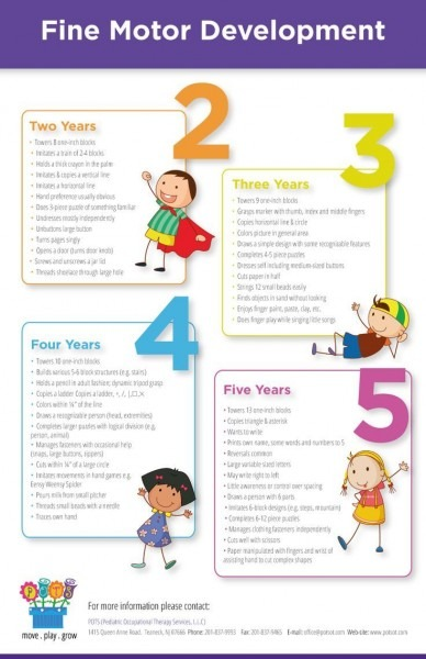 Highlights Of Fine Motor Development Ages 2
