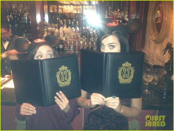 Get Into Club 33! Someday!