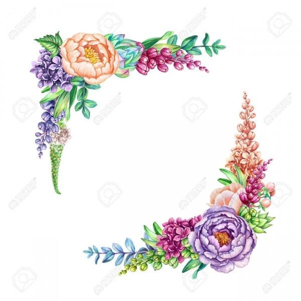 Watercolor Illustration, Floral Background, Wild Flowers, Bouquet