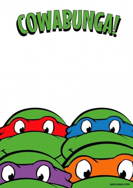 Ninja Turtle Party Invitations