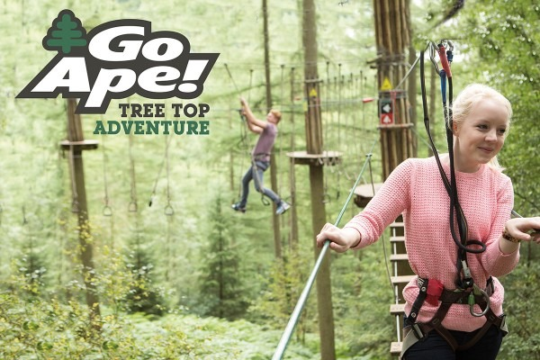 Go Ape Tree Top Adventure For Two