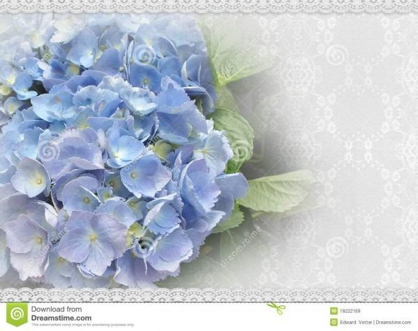 Wedding Invitation Hydrangea And Lace Stock Illustration