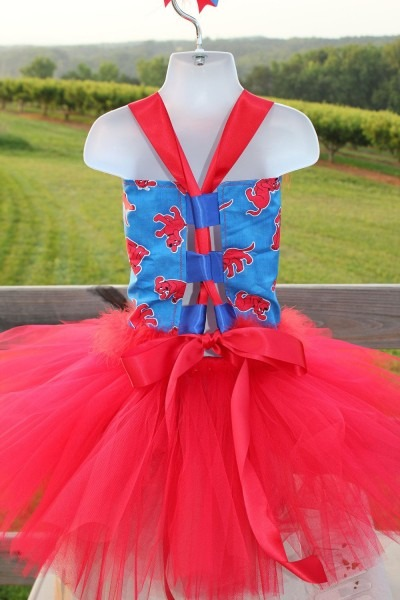 Clifford The Big Red Dog Birthday Party Pageant Corset Tutu Dress