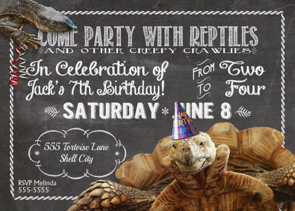 Melinda Bryant Photography  A Reptile Birthday Party