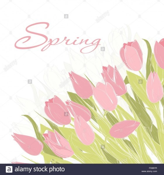 Hand Drawn Spring Tulip Flowers  Spring Greeting Card, Invitation