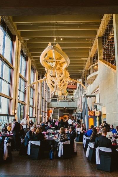 Wedding At The Grand Rapids Public Museum In Mi …